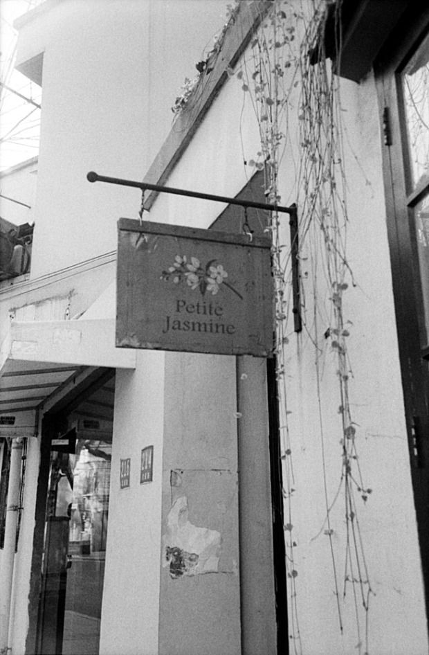 Petite Jasmine